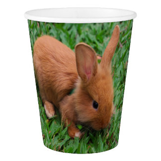 Baby Bunny Paper Cup