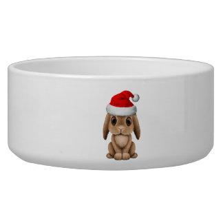 Baby Bunny Wearing a Santa Hat