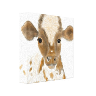 Baby Calf Canvas Print