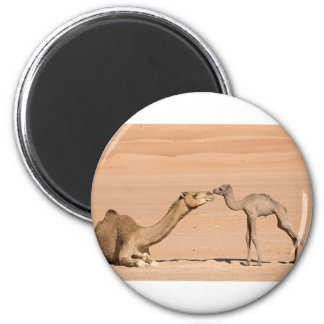 Baby Camel and its Mother 2 Inch Round Magnet