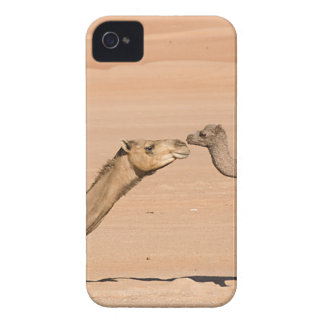 Baby Camel and its Mother Case-Mate iPhone 4 Case