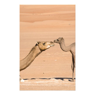 Baby Camel and its Mother Custom Stationery