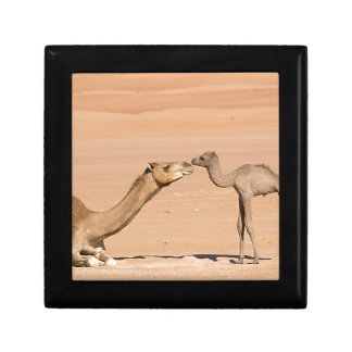 Baby Camel and its Mother Keepsake Box