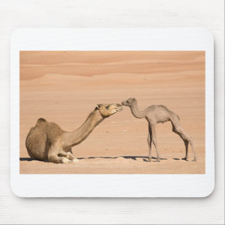 Baby Camel and its Mother Mouse Pad