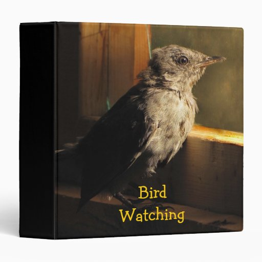 Baby Catbird Vinyl Binder