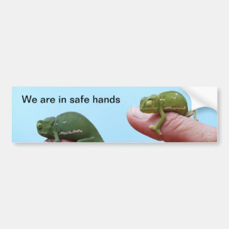 Baby chameleon perspective bumper sticker