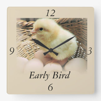 """Baby Chick, """"Early Bird"""" Square Wall Clock"""