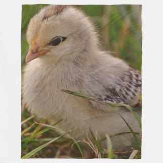 Baby Chick Fleece Blanket
