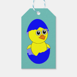 Baby Chick Maternity Baby Boy Blue Pack Of Gift Tags