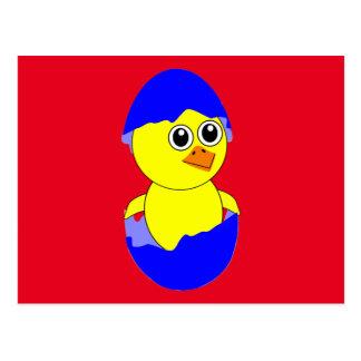 Baby Chick Maternity Baby Boy Blue Postcard