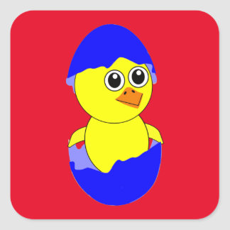 Baby Chick Maternity Baby Boy Blue Square Sticker