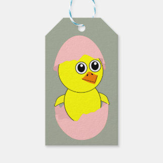 Baby Chick Maternity Pink For Girls Pack Of Gift Tags