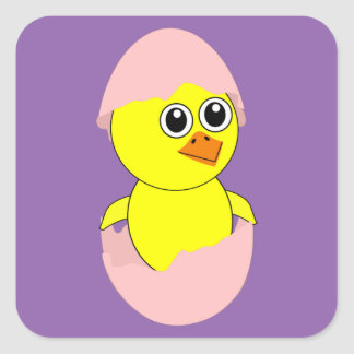 Baby Chick Maternity Pink For Girls Square Sticker