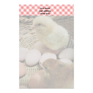 Baby chickens and red checks stationery