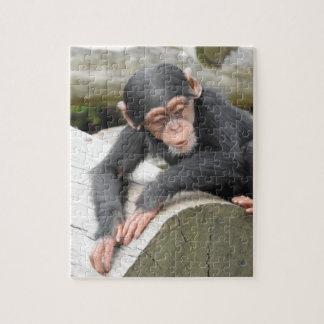 Baby Chimp Puzzle