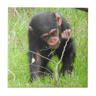 Baby Chimp Tile