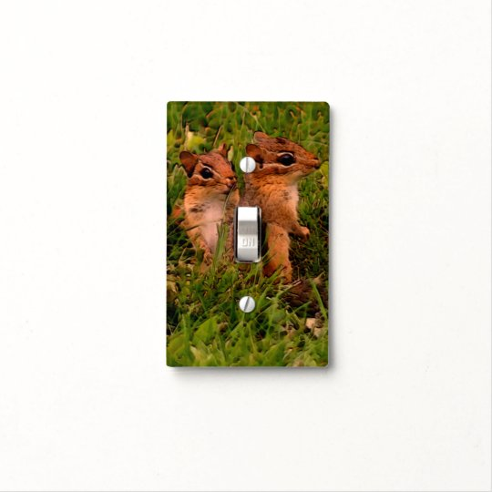 Baby Chipmunks Animal Art Light Switch Cover