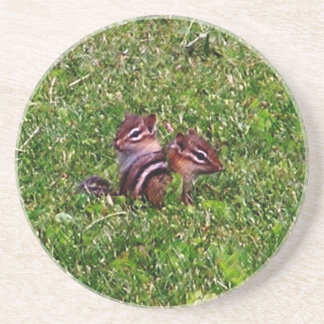 Baby Chipmunks Animal Nature Coaster