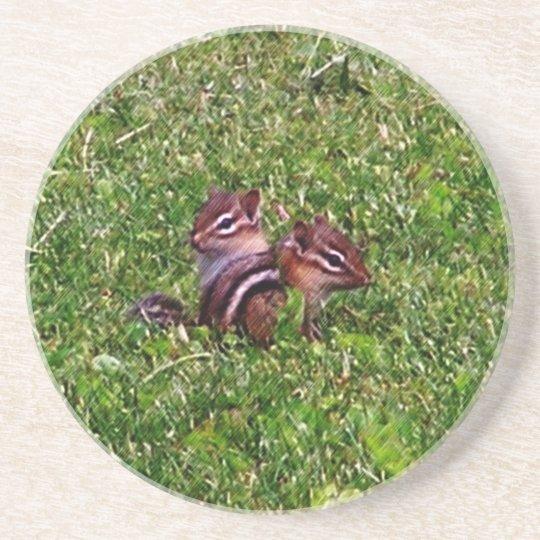 Baby Chipmunks Animal Nature Coaster