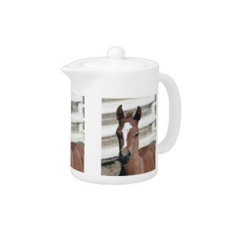Baby Colt Horse Teapot