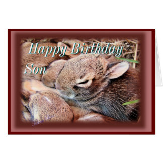Baby Cottontails-any occasion-customize Card