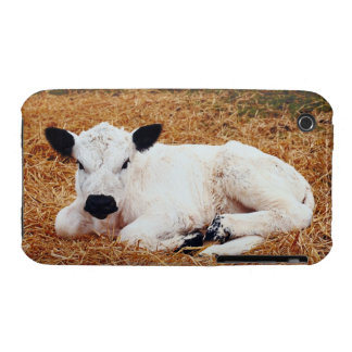 Baby Cow, Calf Case-Mate iPhone 3 Cases