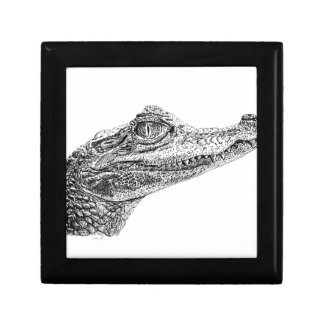 Baby Crocodile Ink Drawing Gift Box
