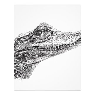 Baby Crocodile Ink Drawing Letterhead