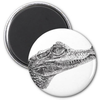 Baby Crocodile Ink Drawing Magnet