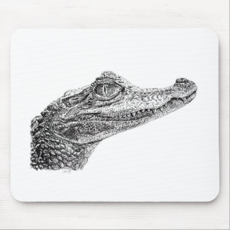 Baby Crocodile Ink Drawing Mouse Pad