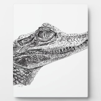 Baby Crocodile Ink Drawing Plaque