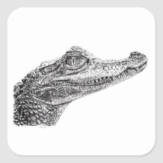 Baby Crocodile Ink Drawing Square Sticker