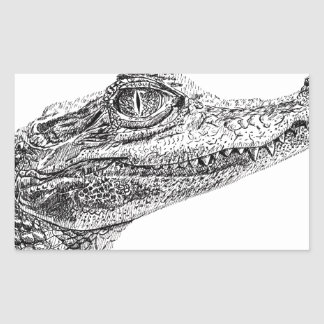 Baby Crocodile Ink Drawing Sticker
