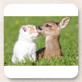 Baby Deer and Kitten Cuddle Coaster