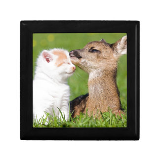 Baby Deer and Kitten Cuddle Gift Box