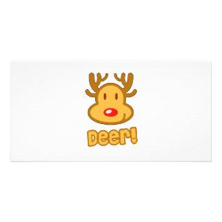 Baby Deer Cartoon Photo Cards