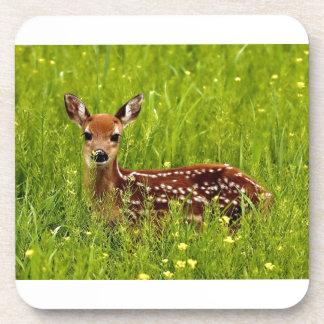 Baby Deer Fawn Coaster