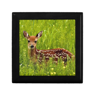 Baby Deer Fawn Gift Box