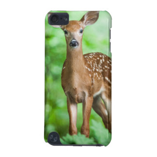 Baby Deer Fawn in the Forest iPod Touch 5G Case