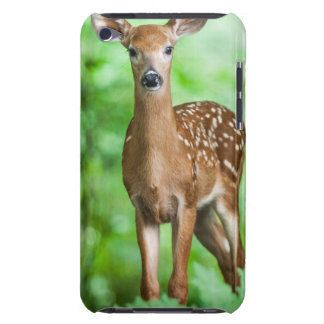Baby Deer Fawn in the Forest iPod Touch Case-Mate Case