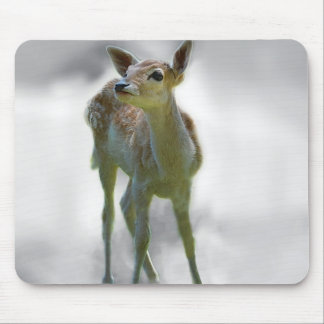 Baby deer's curiosity mouse pad