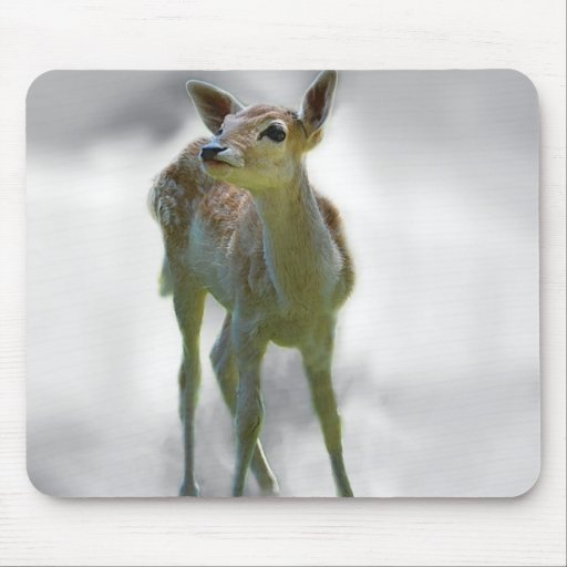 Baby deer's curiosity mouse pads