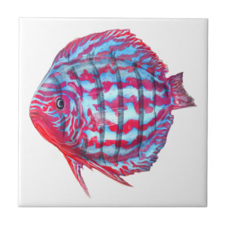 Baby Discus Tile