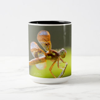 Baby Dragonfly Lit By The Sun Coffee Mug by Julie
