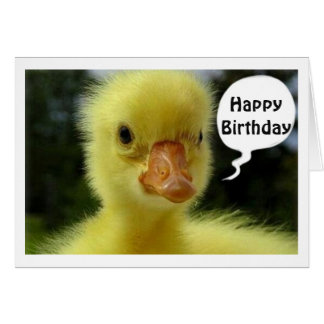 BABY DUCK SAYS HOPE YOUR BIRTHDAY IS JUST DUCKY CARD