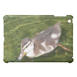 Baby Duck Swimming iPad Case