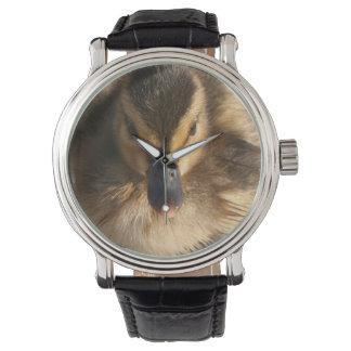Baby Duckling Watch