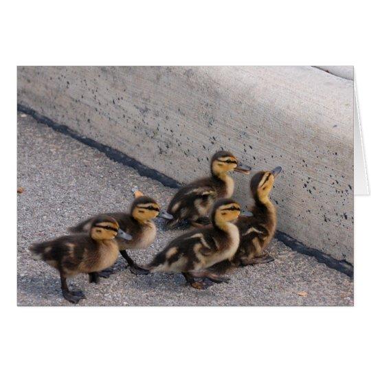 baby ducks card