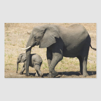 Baby Elephant And Mother Sticker