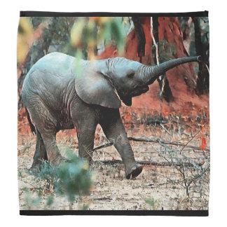 Baby Elephant Bandana
